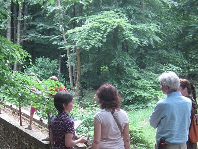 Rondleiding langs restanten van Landgoed De Duno tijdens onze Verloren Landgoederen-wandeling